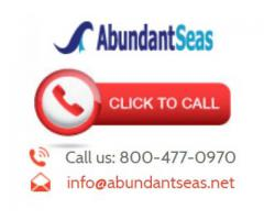 Abundant Seas Business Services