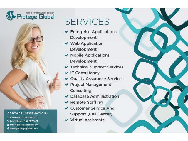 Professional Website/Software development Services in Pakistan