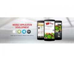Ultimate Solutions – Mobile Application Development