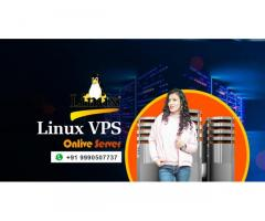 Fully Controllable Linux VPS by Onlive Server